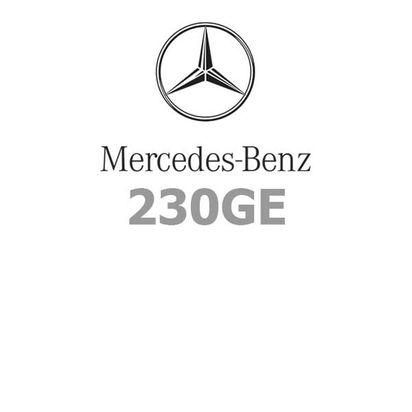 Mercedes-Benz 2380GE